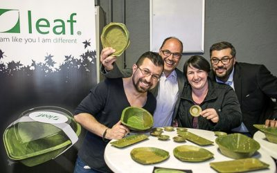 Leaf plates team holding leaf containers bowls and plates dispenser amenities