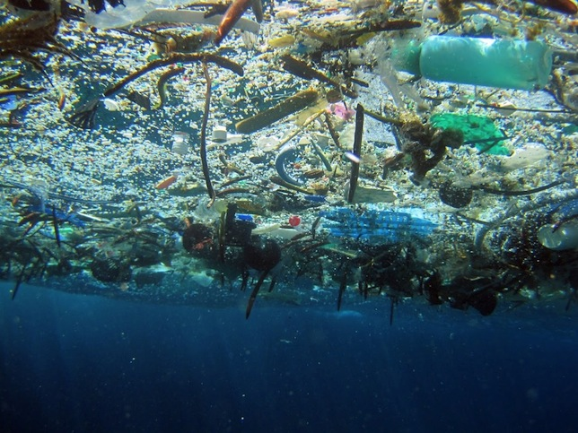 Plastic pollution image